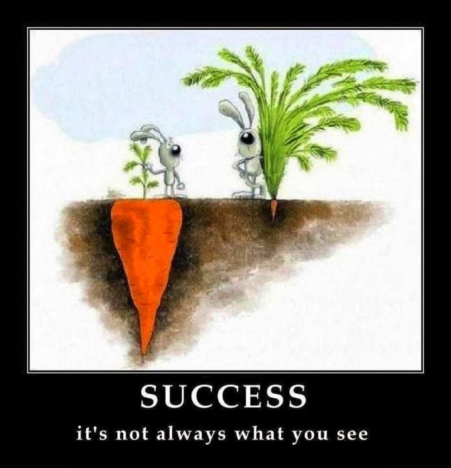 Success is Sometimes Hidden